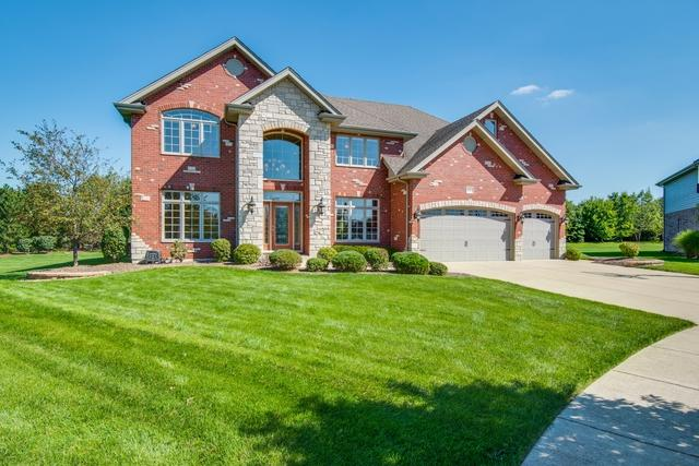 8004 Nature Creek Court, Frankfort, IL 60423 (MLS #10325353) :: John Lyons Real Estate