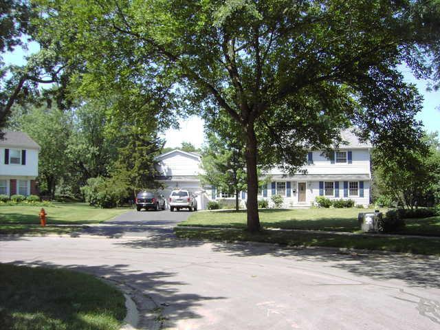 1121 Birkdale Court, Naperville, IL 60563 (MLS #10325641) :: Helen Oliveri Real Estate