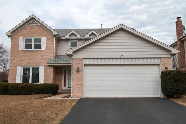 15 S Emerald Avenue, Mundelein, IL 60060 (MLS #10326267) :: BNRealty
