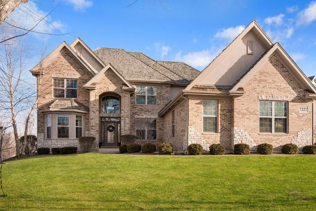 7227 Lenox Court, Long Grove, IL 60060 (MLS #10328308) :: Helen Oliveri Real Estate