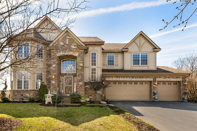 13331 Morning Mist Place, Plainfield, IL 60585 (MLS #10328609) :: BNRealty