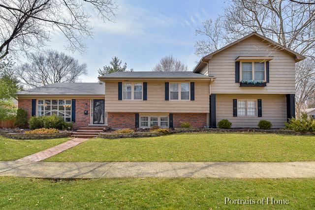 212 Tamarack Avenue, Naperville, IL 60540 (MLS #10329535) :: Helen Oliveri Real Estate