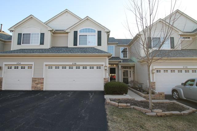 536 Gunnison Court, Gilberts, IL 60136 (MLS #10330090) :: Helen Oliveri Real Estate