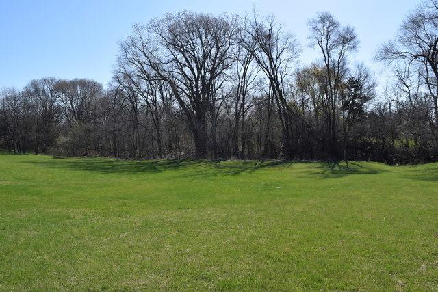 Lot 10 Deer Ridge Lane, Plano, IL 60545 (MLS #10330439) :: Domain Realty