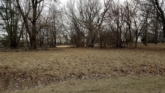 Lot 1516 Shoreline Drive, Varna, IL 61375 (MLS #10330788) :: Ani Real Estate