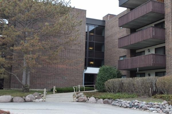 690 Chandler Road #204, Gurnee, IL 60031 (MLS #10332268) :: Janet Jurich Realty Group