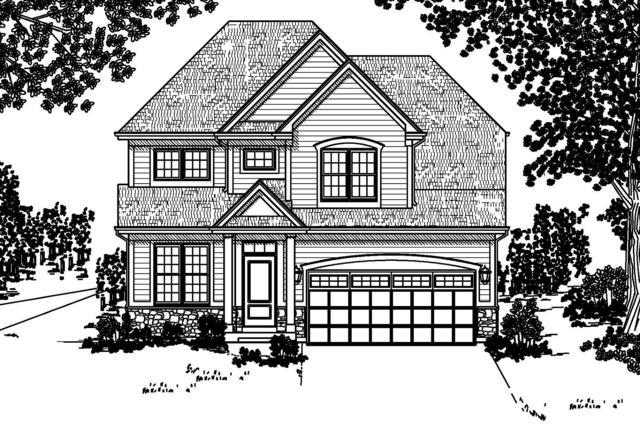 28W774 Ray Street, Warrenville, IL 60555 (MLS #10332458) :: Domain Realty