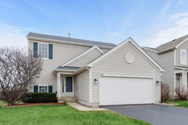 125 Woodland Park Circle, Gilberts, IL 60136 (MLS #10332720) :: Helen Oliveri Real Estate