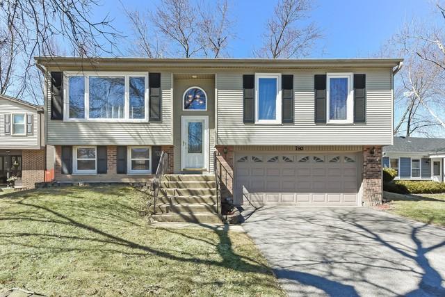 780 Meade Lane, Roselle, IL 60172 (MLS #10332976) :: Helen Oliveri Real Estate