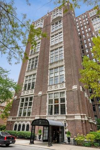 20 E Cedar Street 2A, Chicago, IL 60611 (MLS #10333803) :: Ryan Dallas Real Estate