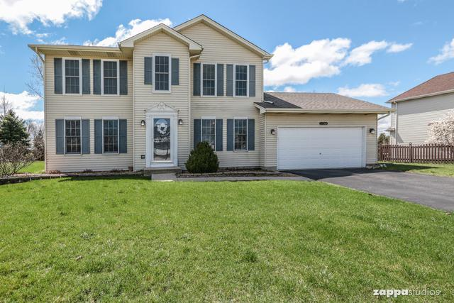 24023 W Heather Court, Plainfield, IL 60585 (MLS #10333826) :: The Dena Furlow Team - Keller Williams Realty