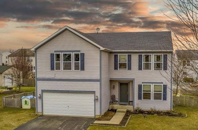 113 Cottonwood Boulevard, Kirkland, IL 60146 (MLS #10334864) :: Helen Oliveri Real Estate