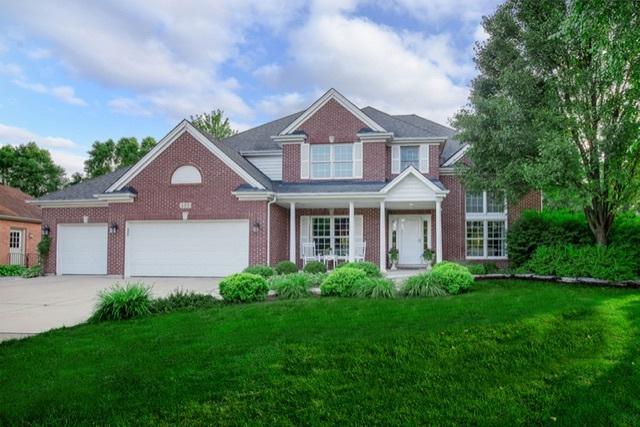 428 Verbena Court, Naperville, IL 60565 (MLS #10335000) :: Helen Oliveri Real Estate