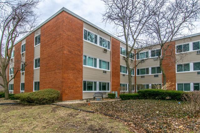 1139 Leavitt Avenue #203, Flossmoor, IL 60422 (MLS #10335212) :: Helen Oliveri Real Estate