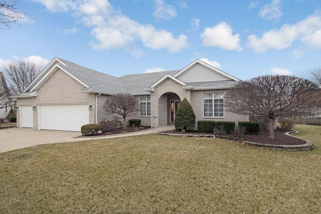 13301 Mary Lee Court, Plainfield, IL 60585 (MLS #10335370) :: Helen Oliveri Real Estate