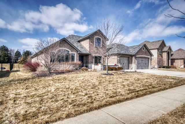 21340 Foxtail Drive, Mokena, IL 60448 (MLS #10335454) :: Helen Oliveri Real Estate