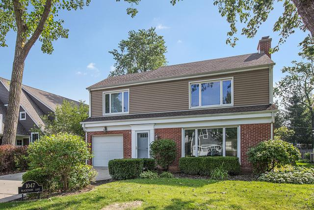1047 Blackthorn Lane, Northbrook, IL 60062 (MLS #10335749) :: Janet Jurich Realty Group