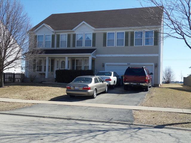 900 Hudson Drive, Joliet, IL 60431 (MLS #10335794) :: Angela Walker Homes Real Estate Group