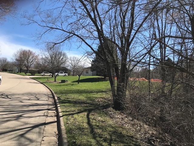 136 Via Savoy Street, Mark, IL 61340 (MLS #10336127) :: Baz Realty Network | Keller Williams Elite