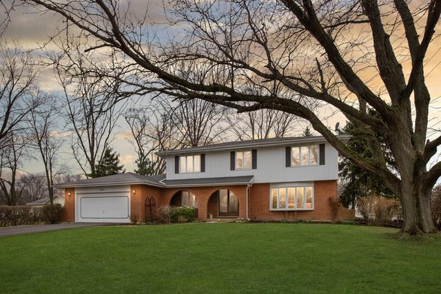 20300 Arcadian Drive, Olympia Fields, IL 60461 (MLS #10337058) :: Domain Realty