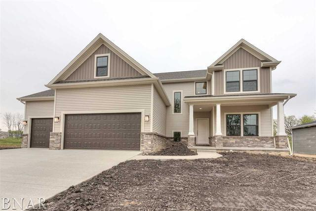 205 Eldon Drive, Downs, IL 61736 (MLS #10337524) :: BNRealty