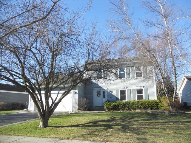 1715 Thorneapple Lane, Algonquin, IL 60102 (MLS #10337997) :: Helen Oliveri Real Estate