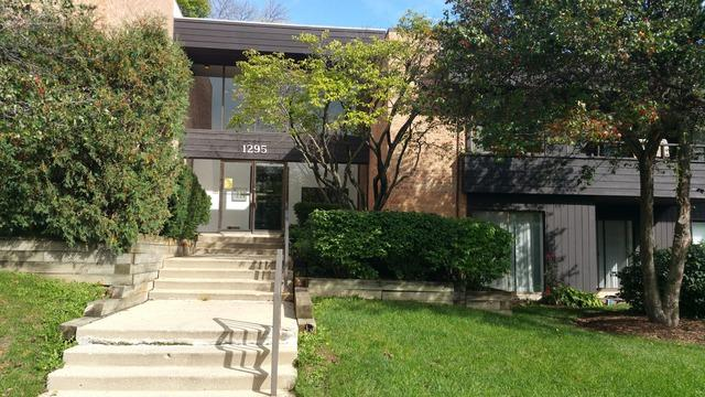 1295 N Sterling Avenue #203, Palatine, IL 60067 (MLS #10338070) :: Domain Realty