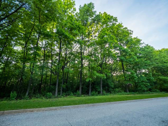 11202 Hill Crest Lane - Photo 1
