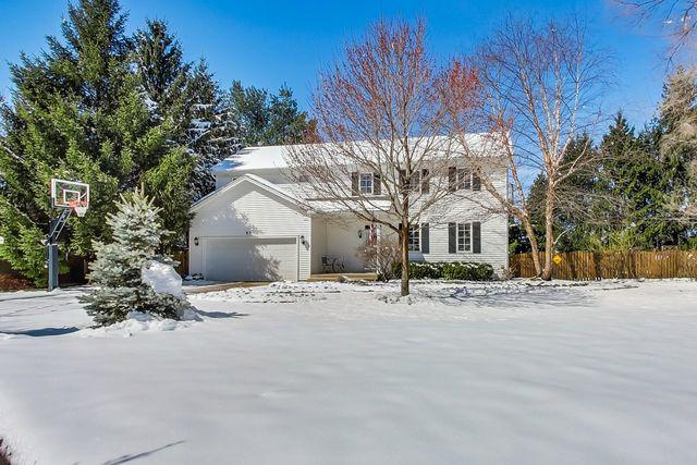 57 Alice Street, Algonquin, IL 60102 (MLS #10338346) :: Leigh Marcus | @properties