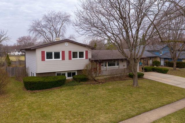 784 Darlington Lane, Crystal Lake, IL 60014 (MLS #10338555) :: Helen Oliveri Real Estate