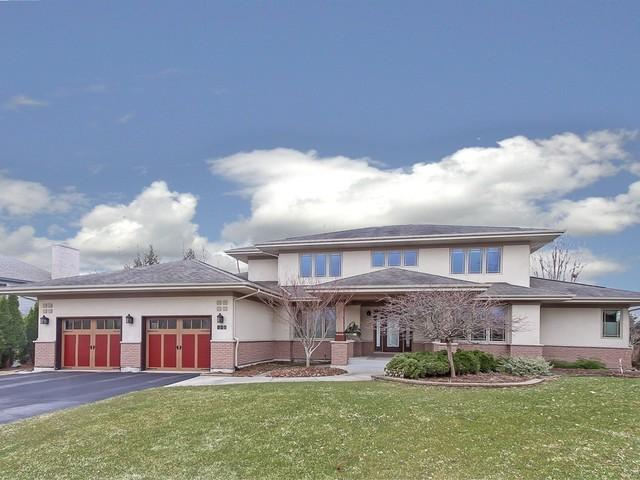 981 Hayrack Drive, Algonquin, IL 60102 (MLS #10338916) :: Domain Realty