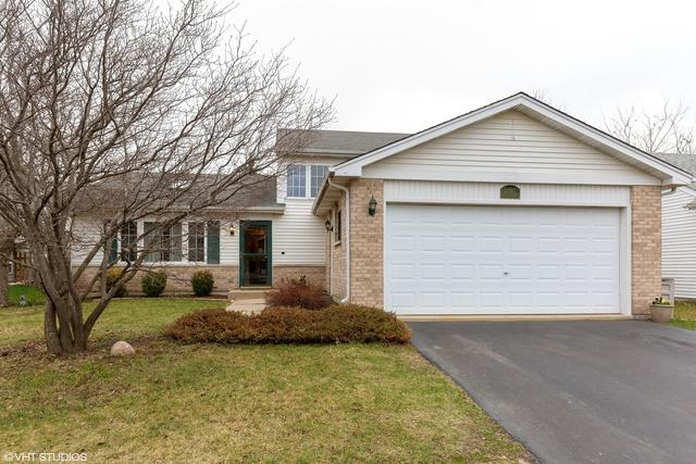 2810 Hillsboro Lane, Lake In The Hills, IL 60156 (MLS #10339512) :: BNRealty