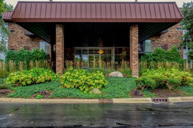 1041 W Ogden Avenue #132, Naperville, IL 60563 (MLS #10339560) :: Helen Oliveri Real Estate