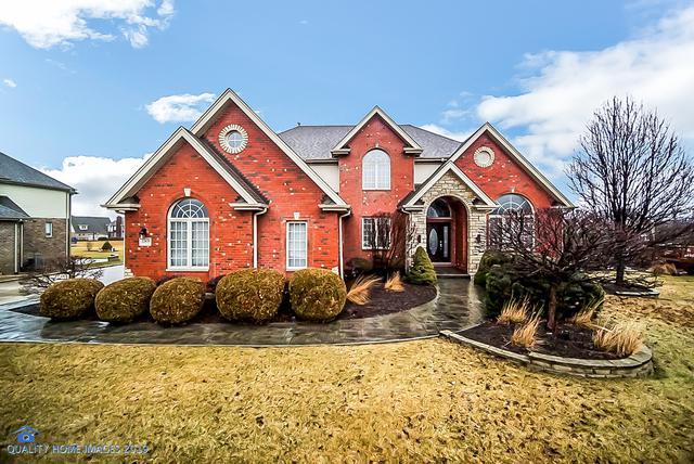 22639 Hunters Trail, Frankfort, IL 60423 (MLS #10340090) :: Helen Oliveri Real Estate