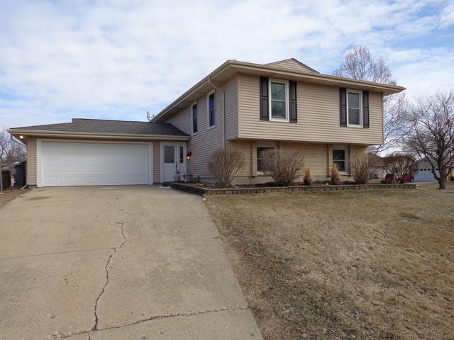 199 Lockwood Lane, Bloomingdale, IL 60108 (MLS #10340170) :: Domain Realty