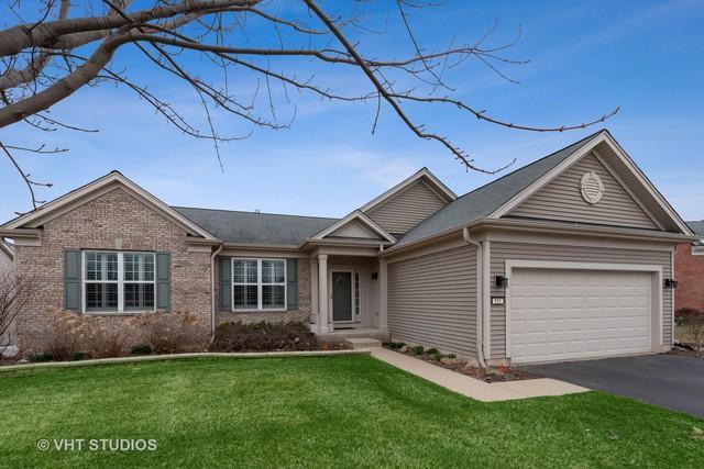 815 Rambling Brook Circle, Elgin, IL 60124 (MLS #10341120) :: Helen Oliveri Real Estate