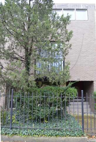 1323 E 55th Street, Chicago, IL 60637 (MLS #10341848) :: Domain Realty