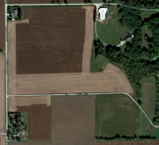 13751 N 130 East Road, HOMER, IL 61849 (MLS #10341983) :: Littlefield Group