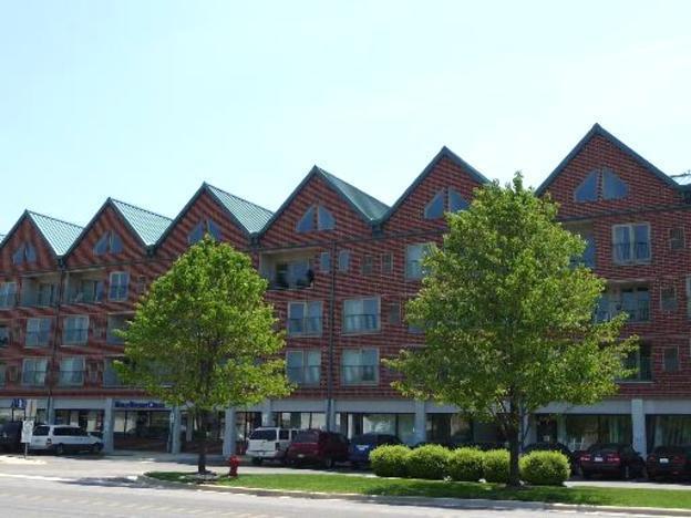 1111 Burlington Avenue #210, Lisle, IL 60532 (MLS #10342102) :: Domain Realty