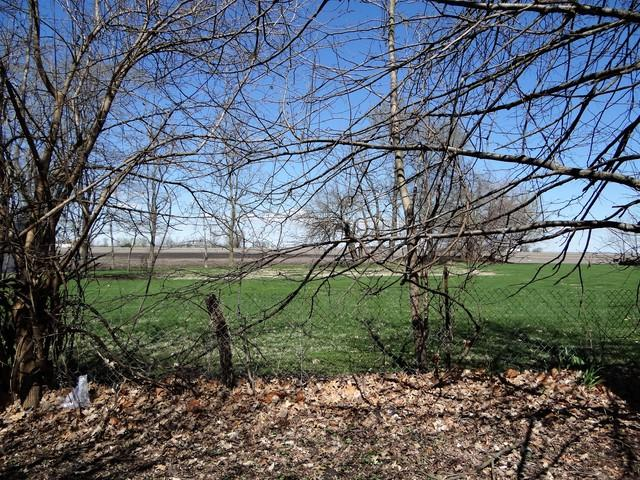 LOT 1 E Kyle Street, OGDEN, IL 61859 (MLS #10342501) :: Littlefield Group