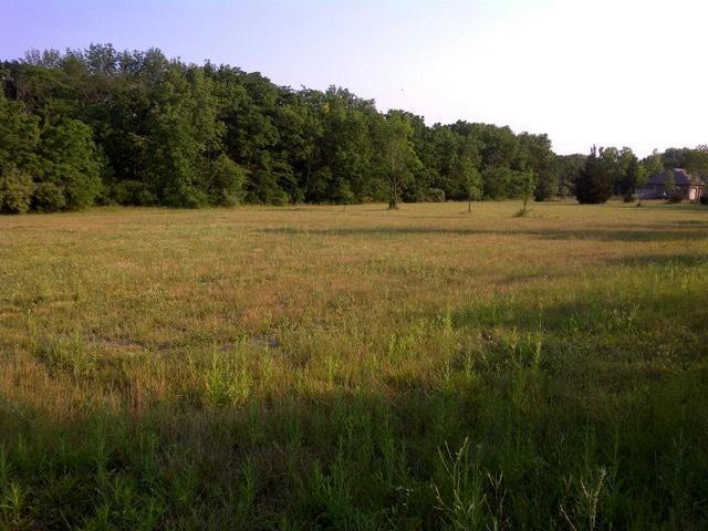 Lot 3 Reidel Subd, MONTICELLO, IL 61856 (MLS #10342600) :: Littlefield Group