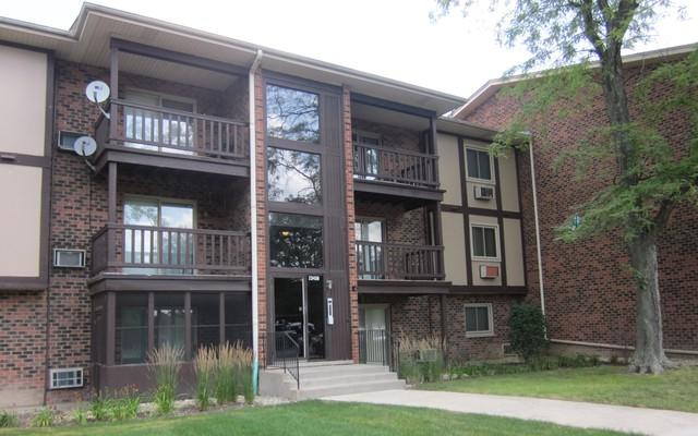 23439 S Western Avenue D44, Park Forest, IL 60466 (MLS #10342760) :: Leigh Marcus | @properties