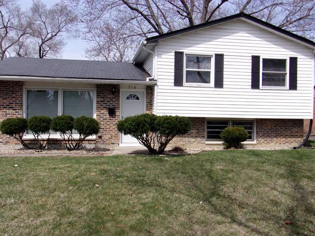 510 Landau Road, University Park, IL 60466 (MLS #10343041) :: Janet Jurich Realty Group