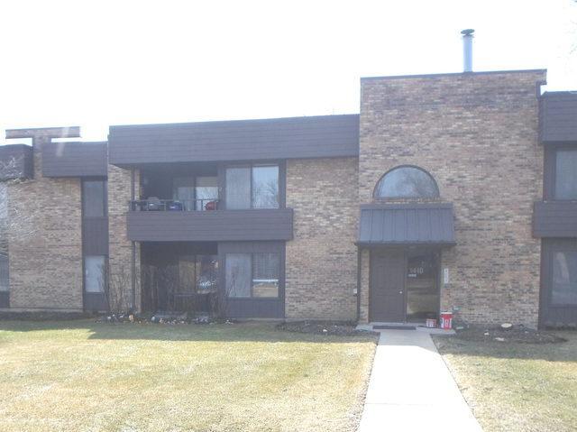 1410 N Sterling Avenue #101, Palatine, IL 60067 (MLS #10343340) :: Helen Oliveri Real Estate