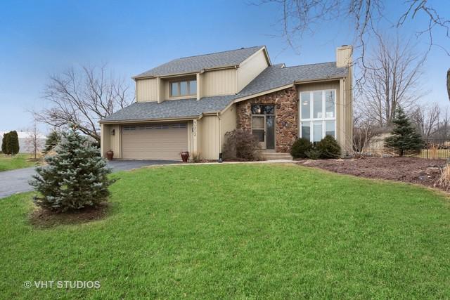 9S212 Chandelle Drive, Naperville, IL 60564 (MLS #10343349) :: Helen Oliveri Real Estate