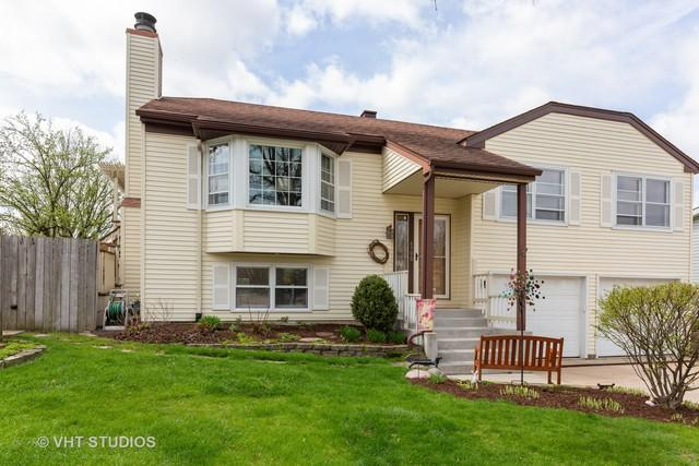 6900 Robey Avenue, Downers Grove, IL 60516 (MLS #10343357) :: The Wexler Group at Keller Williams Preferred Realty