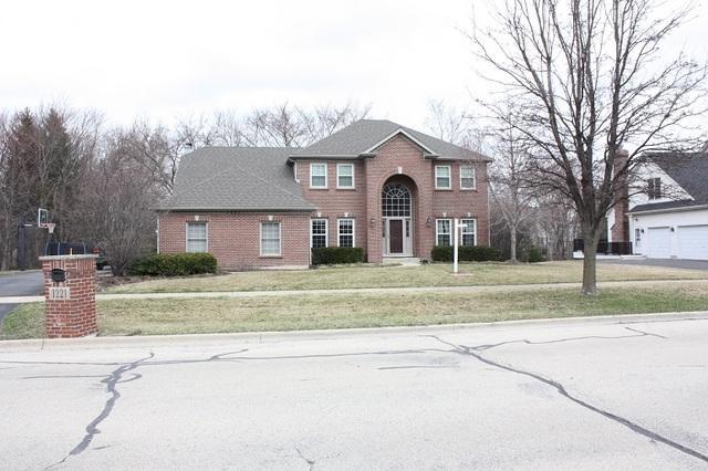 1221 Wind Energy Pass, Batavia, IL 60510 (MLS #10343561) :: Helen Oliveri Real Estate