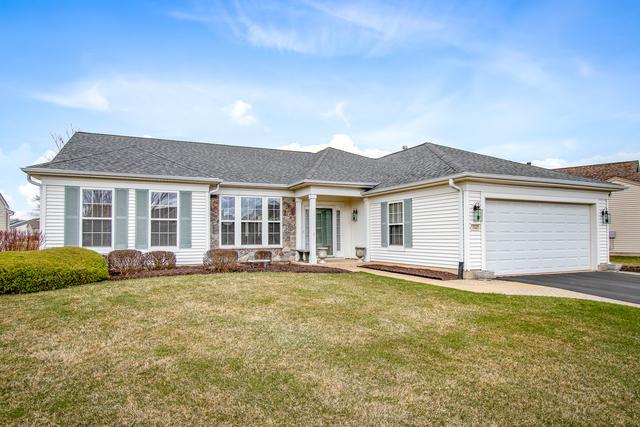 13321 Dakota Fields Drive, Huntley, IL 60142 (MLS #10343594) :: Century 21 Affiliated