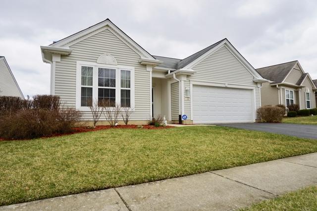 11782 Ludbury Ridge, Huntley, IL 60142 (MLS #10343631) :: Leigh Marcus   @properties