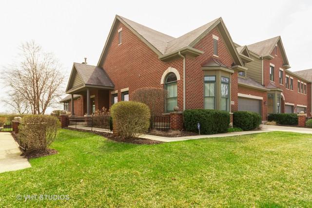 21749 Cappel Lane, Frankfort, IL 60423 (MLS #10343669) :: Baz Realty Network | Keller Williams Preferred Realty
